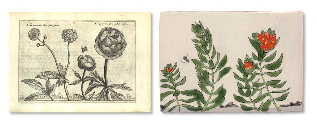 Hortus floridus. Crispin van de Pass. 1614. Andersen Horticultural Library. UMN. (left)